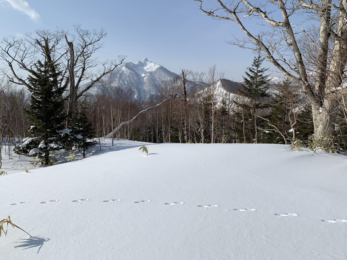 """2019年2月『雪山は呼ぶよ』 February 2019 \""""Hokkaido, Powder Snow Paradice\""""_c0219616_22584465.jpg"""