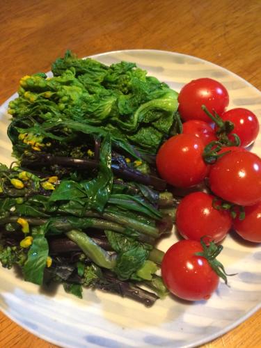 美味しい野菜_e0103327_23153071.jpg