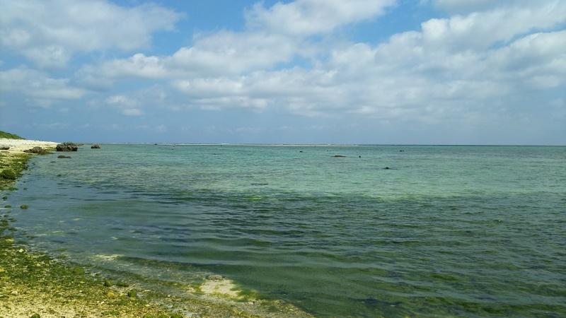 白保海岸  ◎石垣島の旅④◎_e0305834_22334102.jpg