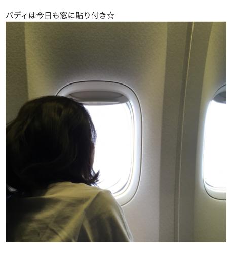 ⑥サンフランシスコ予習旅  2019冬 /おしまい_b0228252_22025219.jpeg