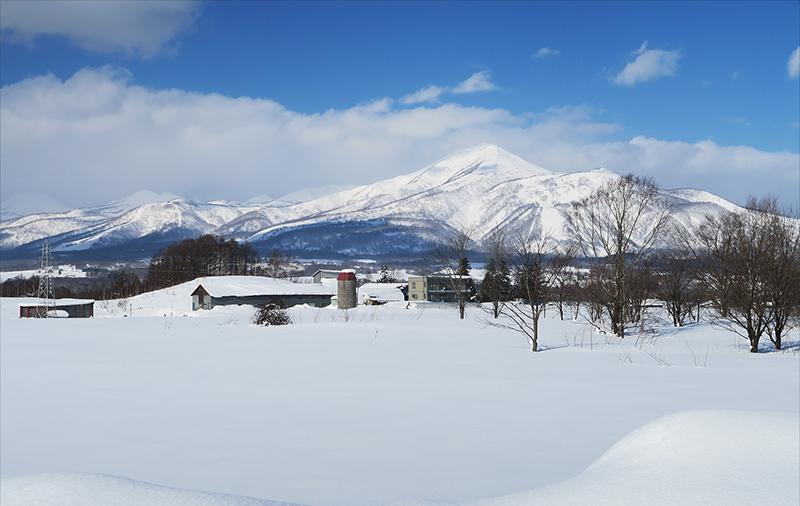 北海道スキーツアー_f0103459_8195649.jpg