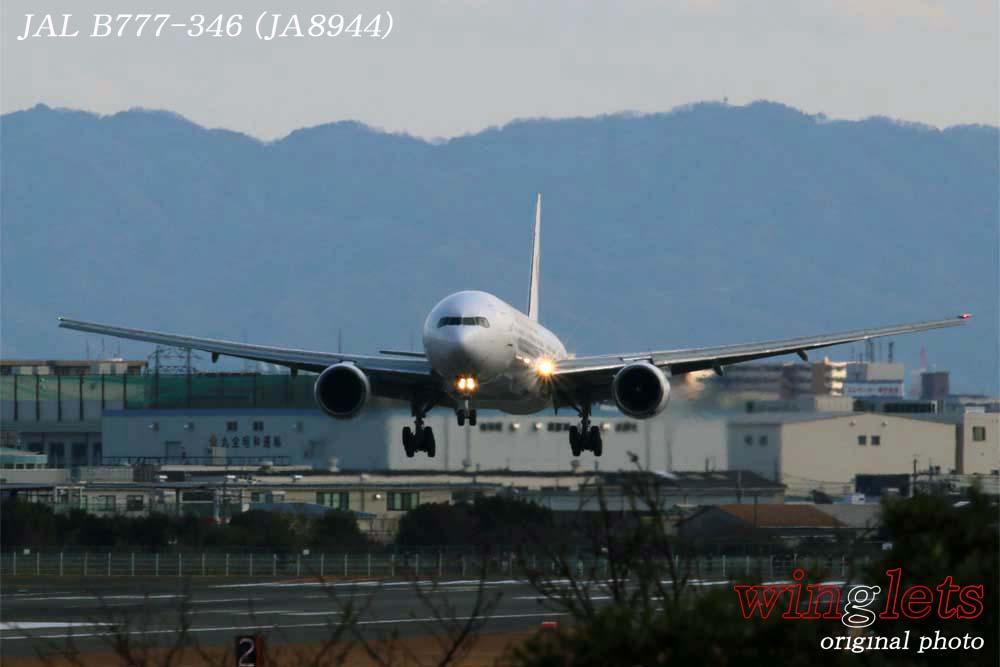 '19年 伊丹空港レポート・・・JAL/JA8944_f0352866_19114938.jpg