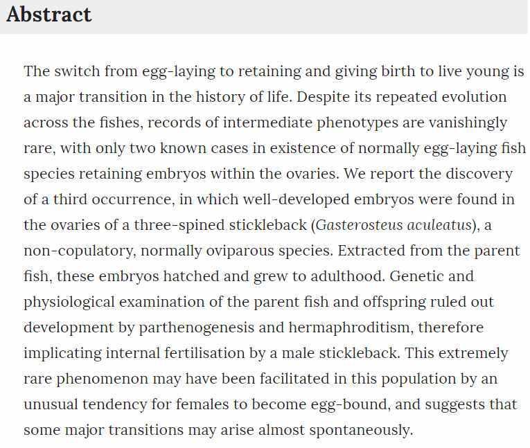 単為発生のトゲウオ発見の論文かと思ったら卵巣内受精という珍しい現象だった_c0025115_21292660.jpg