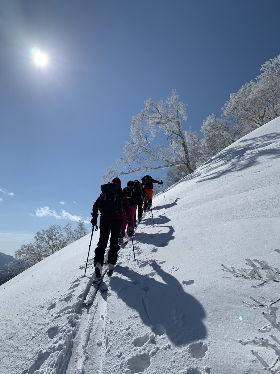 """2019年2月 『白銀の山、素敵な仲間たち、良い一日』 February 2019 \""""Snow Mountains, Good Friends\""""_c0219616_20252238.jpg"""