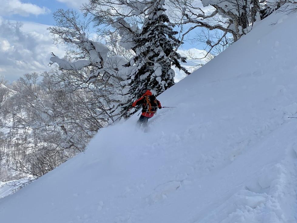 """2019年2月 『白銀の山、素敵な仲間たち、良い一日』 February 2019 \""""Snow Mountains, Good Friends\""""_c0219616_20405425.jpg"""