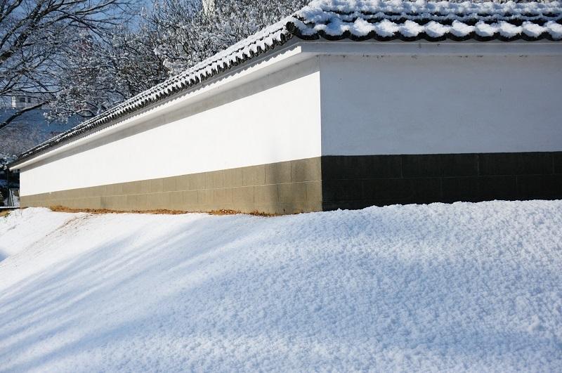 雪が積もった時(思い出)_b0230131_07025553.jpg