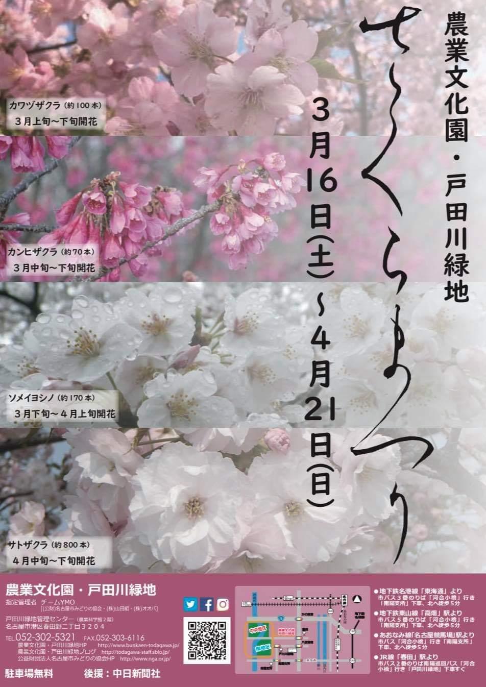 戸田川緑地 さくらまつり出演、ありがとうございました!_f0373339_13254981.jpeg