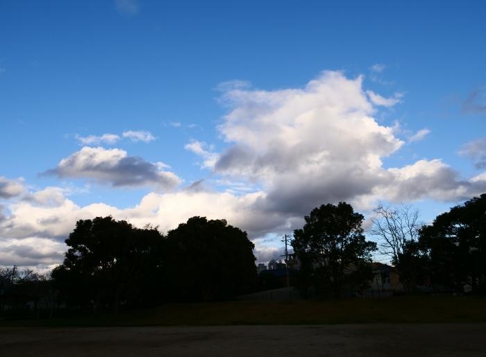 冬の雲  2019-02-22 00:00   _b0093754_21043762.jpg