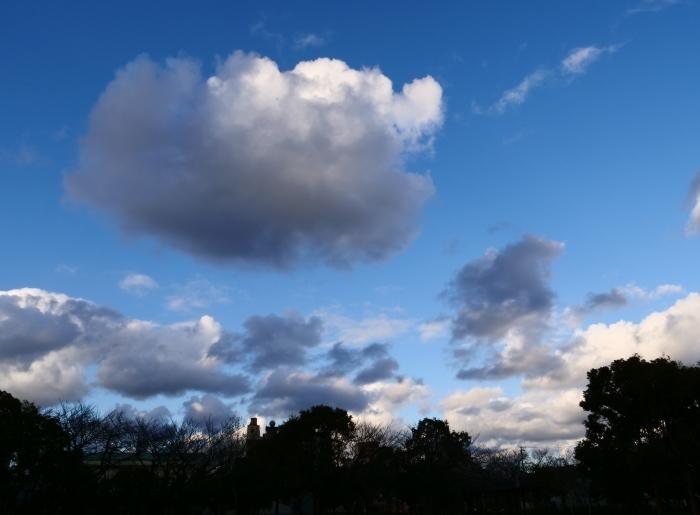冬の雲  2019-02-22 00:00   _b0093754_21052765.jpg
