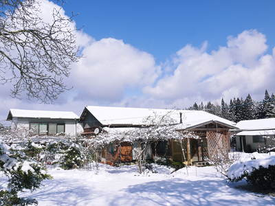株式会社旬援隊の冬の様子 この冬、初の積雪(?)です!春の訪れが早いはずが…、果樹たちが心配です!_a0254656_17584721.jpg
