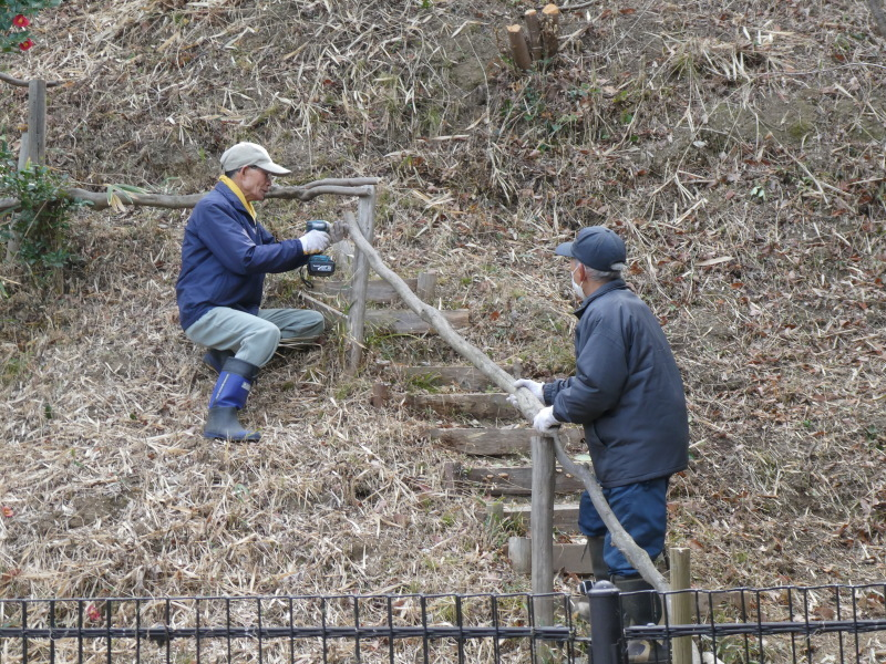 ぼうけん山入口整理・・・うみべの森_c0108460_17321193.jpg
