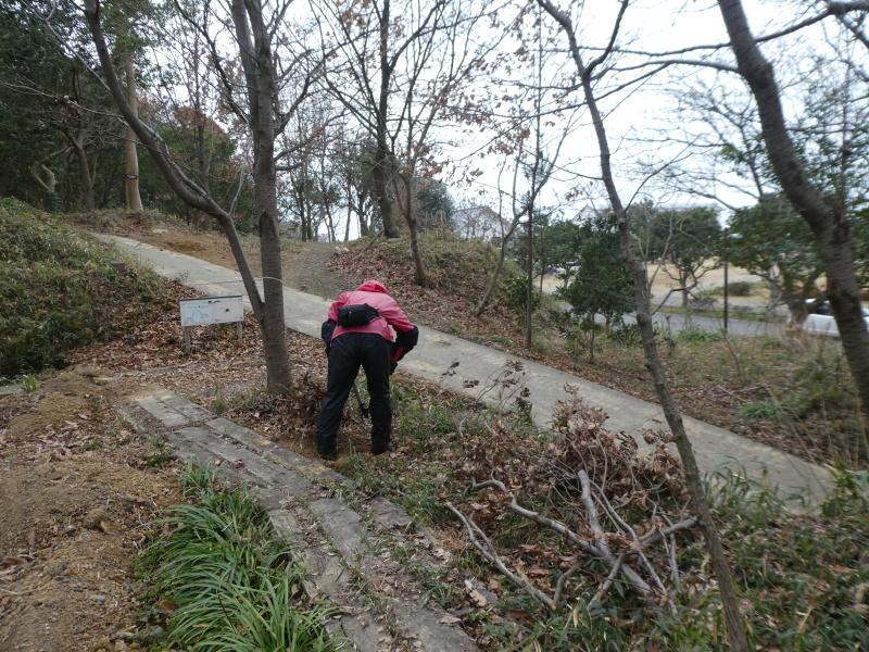 ぼうけん山入口整理・・・うみべの森_c0108460_17340243.jpg