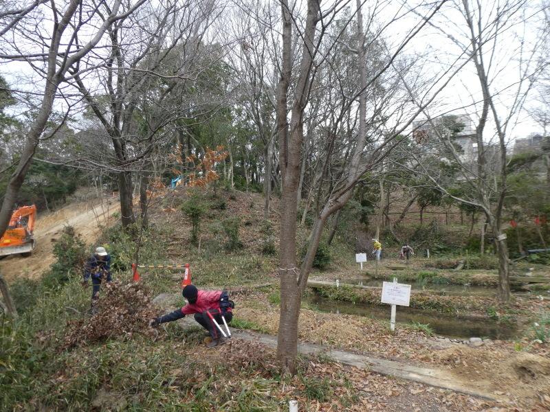 ぼうけん山入口整理・・・うみべの森_c0108460_17340381.jpg
