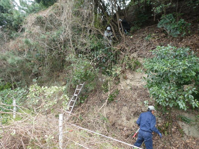 ぼうけん山入口整理・・・うみべの森_c0108460_17390864.jpg