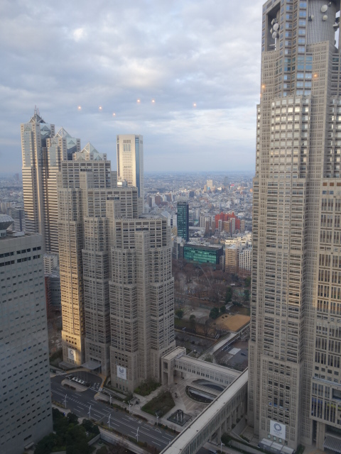 京王プラザホテル (6)_b0405262_15515737.jpg