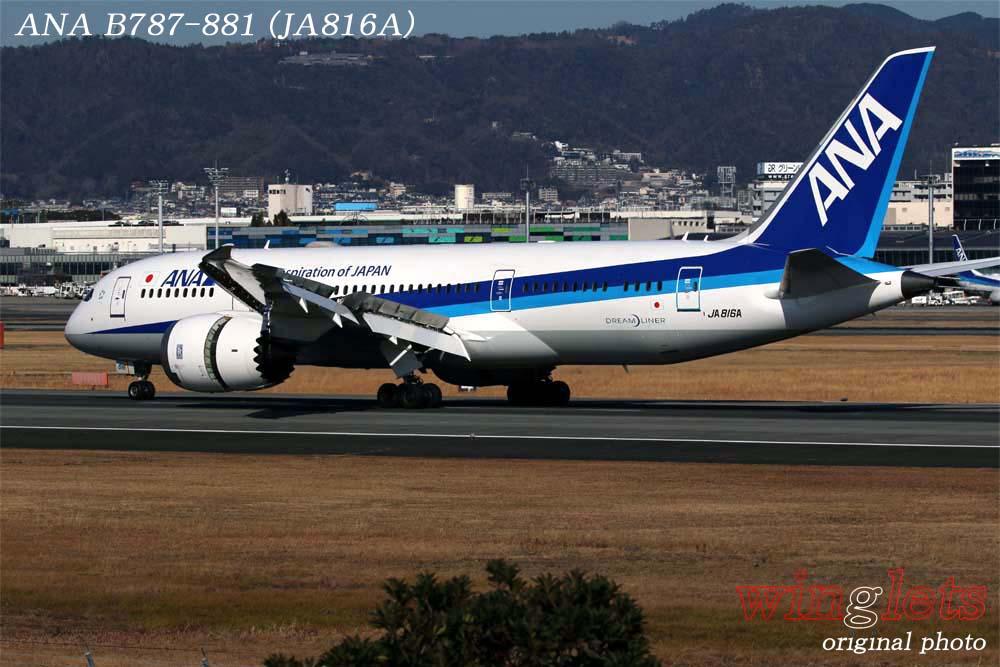 '19年 伊丹空港レポート・・・ANA/JA816A_f0352866_21373183.jpg