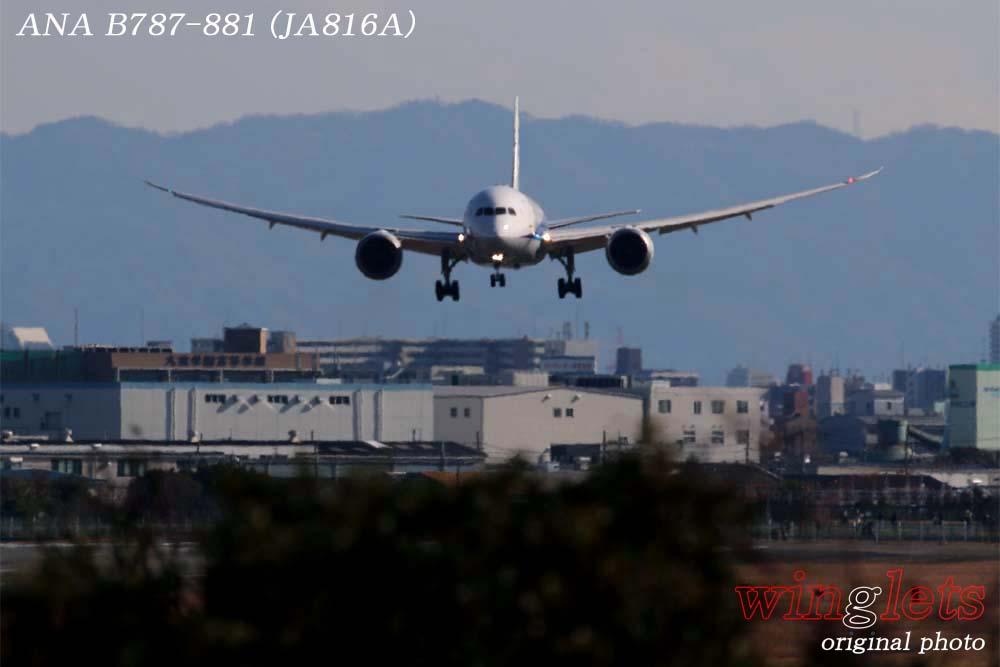 '19年 伊丹空港レポート・・・ANA/JA816A_f0352866_2137344.jpg