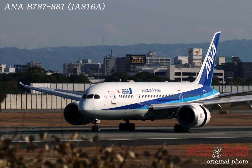'19年 伊丹空港レポート・・・ANA/JA816A_f0352866_21403372.jpg