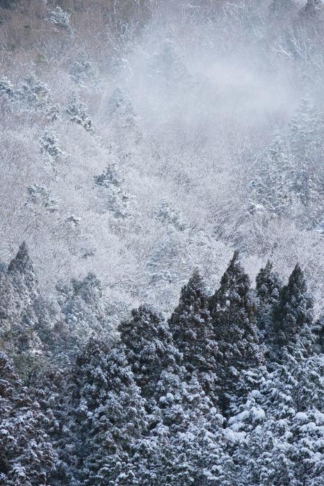 京都 大原雪景色 2019_f0021869_23570433.jpg