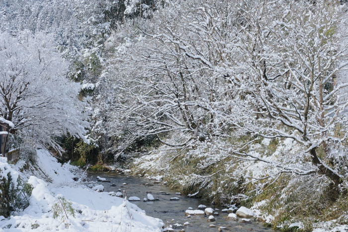 京都 大原雪景色 2019_f0021869_23570732.jpg