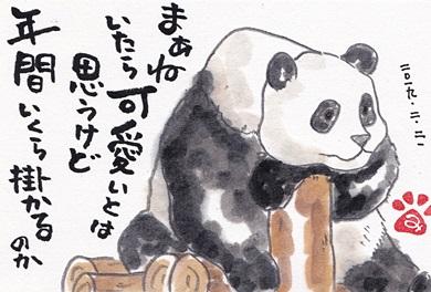 茨城県にパンダが来る?!_b0140270_742496.jpg