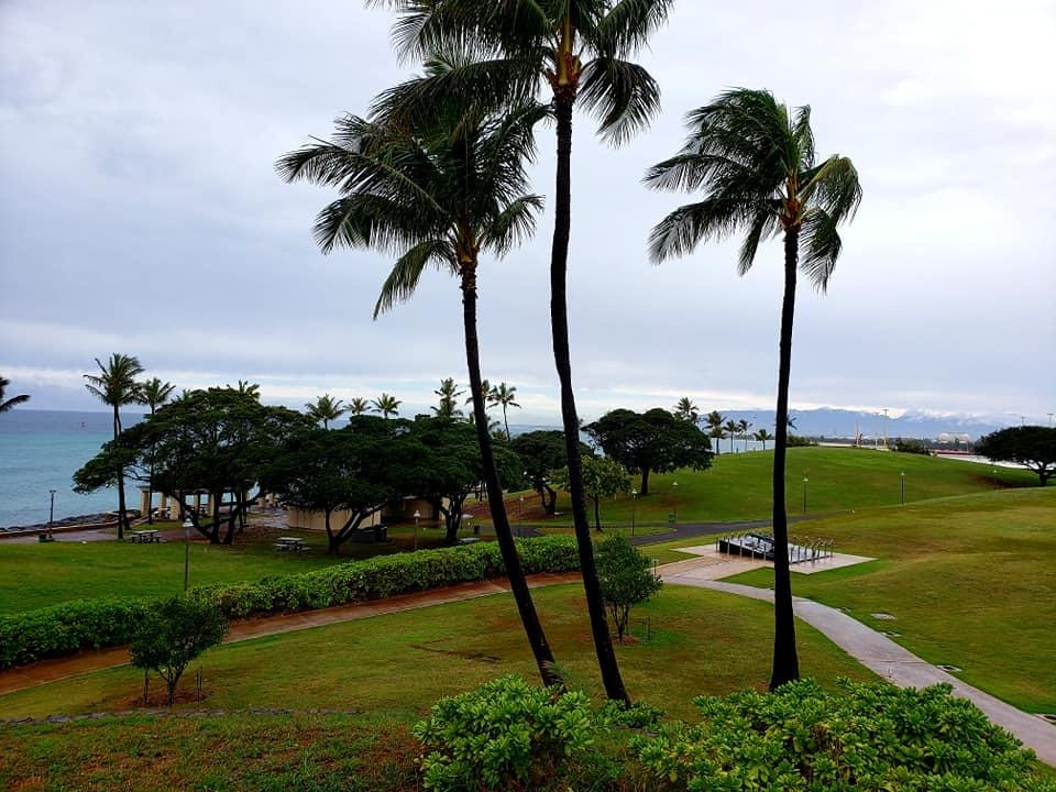 愛媛丸の碑に手を合わせて、ハワイでの全ての予定を終了しました。_c0186691_10182650.jpg