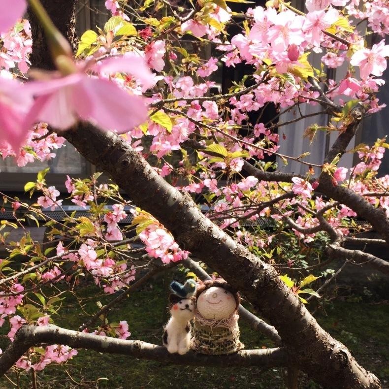 春を迎える_e0401402_06312744.jpeg