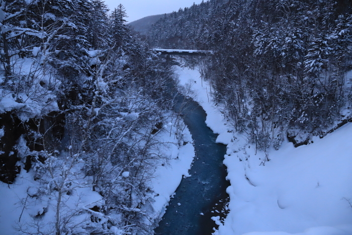 【白ひげの滝】北海道旅行 - 4 -_f0348831_20514843.jpg
