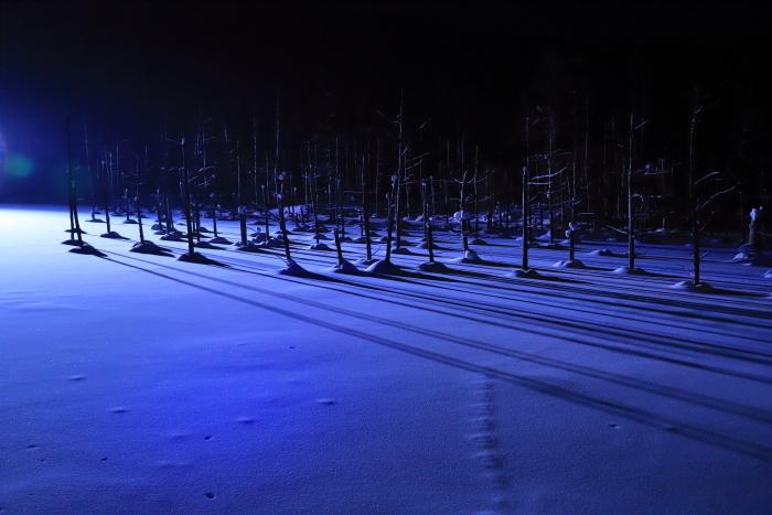 【青い池】北海道旅行 - 5 -_f0348831_21144979.jpg