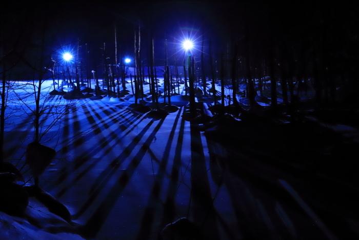 【青い池】北海道旅行 - 5 -_f0348831_21145999.jpg