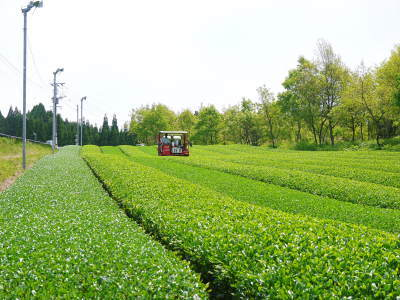 『陽だまり弁当』が届きました!熊本県菊池市のNPO法人「きらり水源村」の 心温まる取り組みを紹介! _a0254656_18365470.jpg