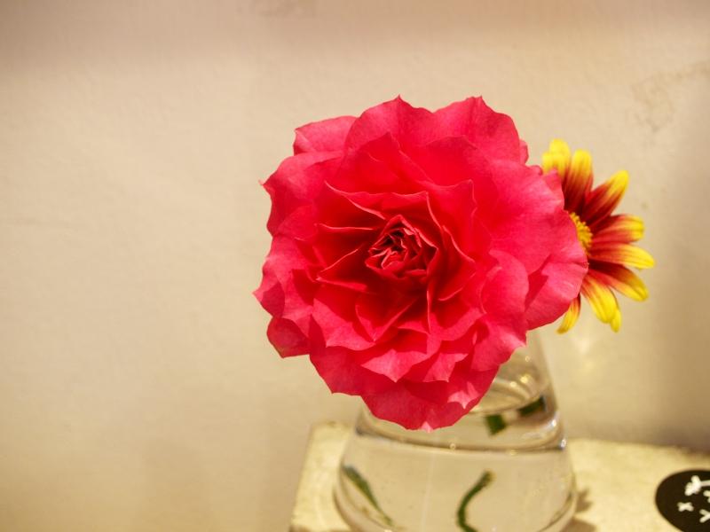 素敵な薔薇が嬉しくて_d0103566_17184157.jpg