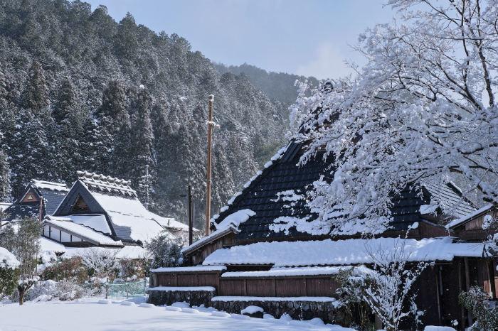 京都 大原雪景色 2019_f0021869_13493343.jpg