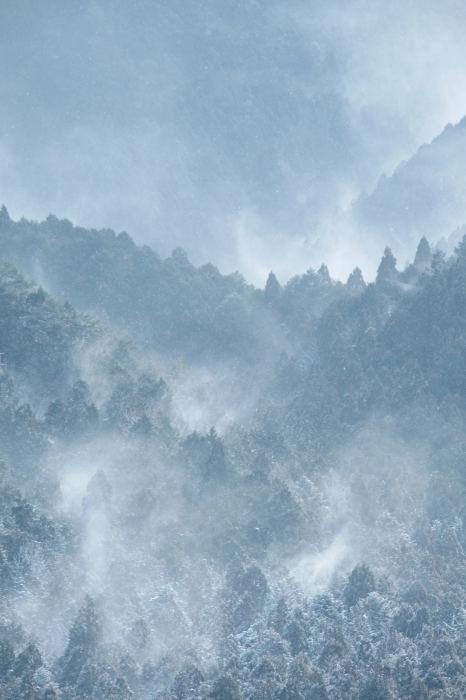 京都 大原雪景色 2019_f0021869_13514825.jpg