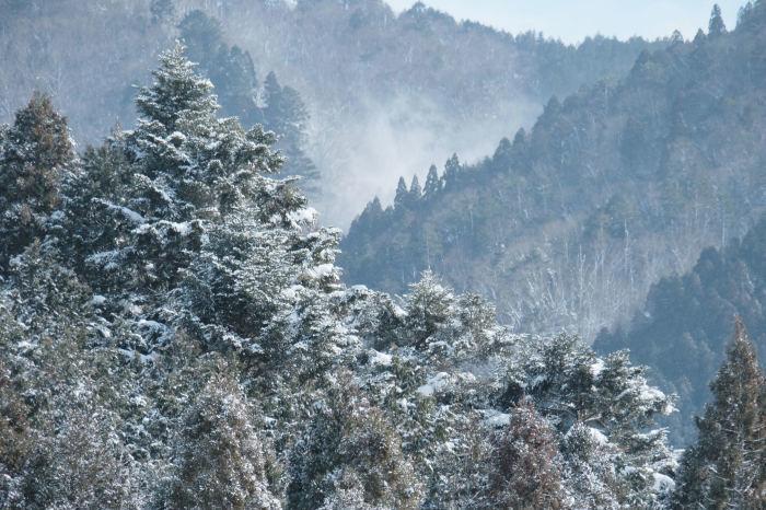 京都 大原雪景色 2019_f0021869_13514867.jpg