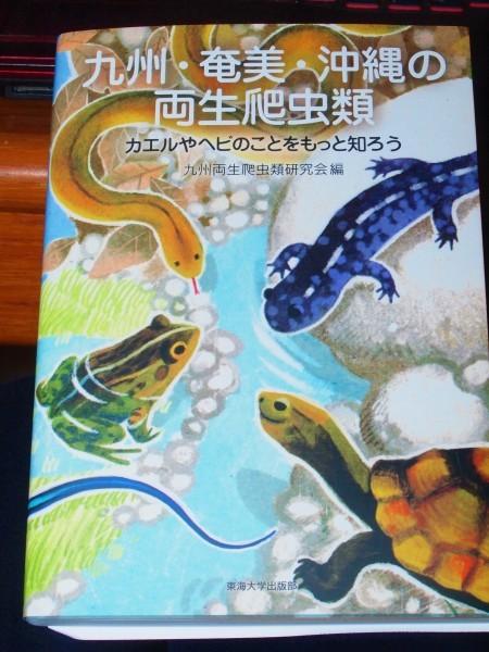 九州・奄美・沖縄の両生爬虫類_b0135573_09343486.jpg