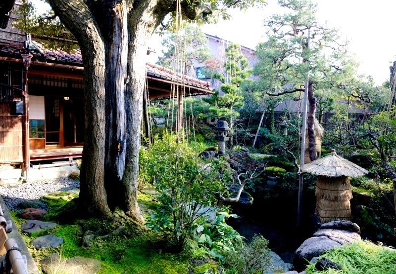 加賀の庭園_c0006305_14525041.jpg