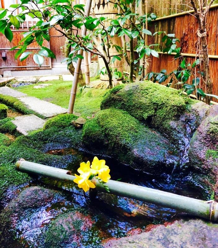 加賀の庭園_c0006305_14525948.jpg