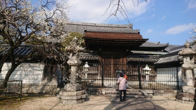 梅林寺の梅_f0035506_10532231.jpg