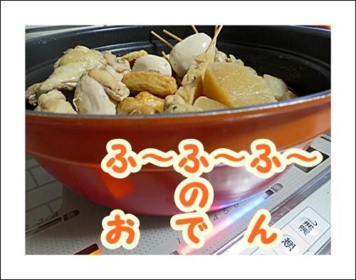 f0060310_20075266.jpg