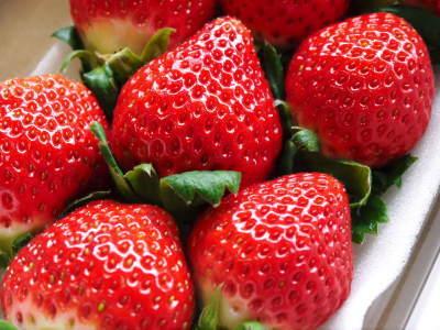 熊本限定栽培品種のイチゴ『熊紅(ゆうべに)』 大好評に付、は少々お待たせする場合がございます!_a0254656_17535917.jpg