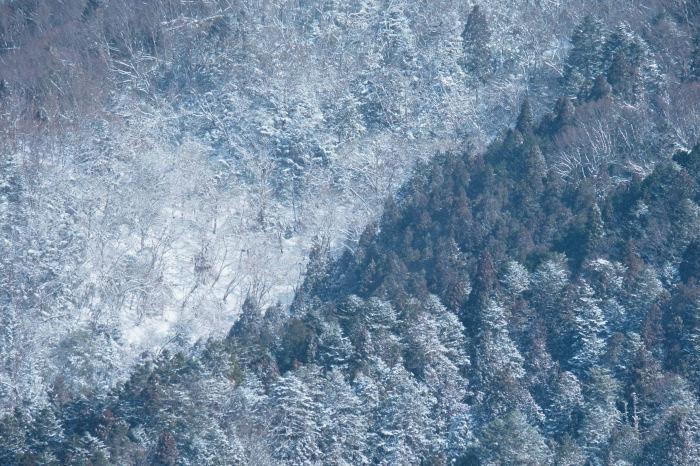 京都 大原雪景色 2019_f0021869_23233862.jpg