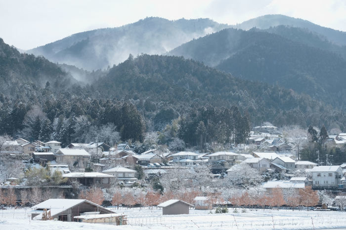 京都 大原雪景色 2019_f0021869_23234008.jpg