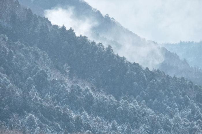 京都 大原雪景色 2019_f0021869_23234075.jpg