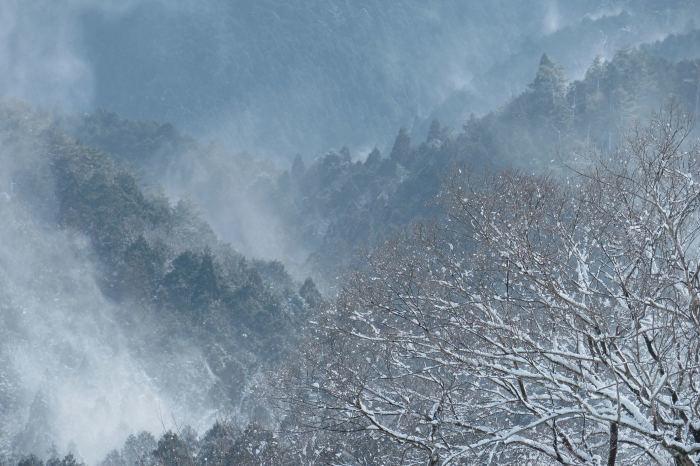 京都 大原雪景色 2019_f0021869_23234270.jpg