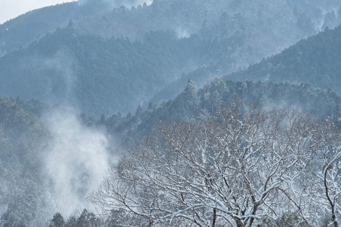 京都 大原雪景色 2019_f0021869_23234273.jpg