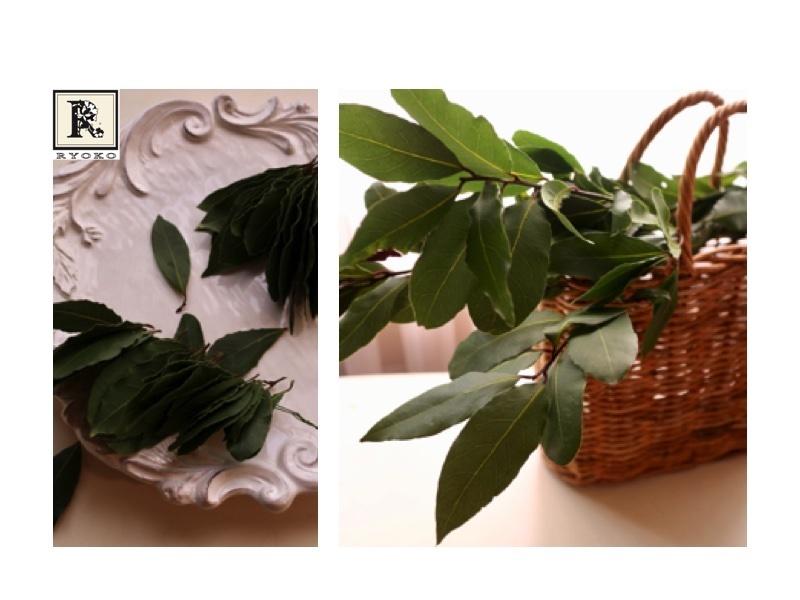 いい香りの新鮮な月桂樹の葉(ローリエ)をいただきました!_c0128489_18473648.jpg
