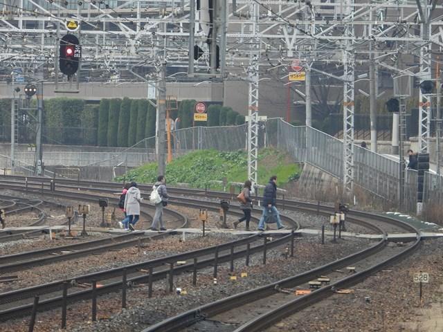 藤田八束の鉄道写真@サントリー山崎工場前で鉄道写真を撮る、山崎カーブは絶景の鉄道写真スポット_d0181492_22000017.jpg