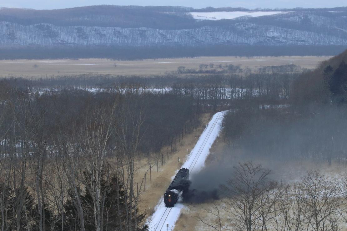 真横に倒れる黒煙 - 2019年冬・釧網線 -_b0190710_19091321.jpg