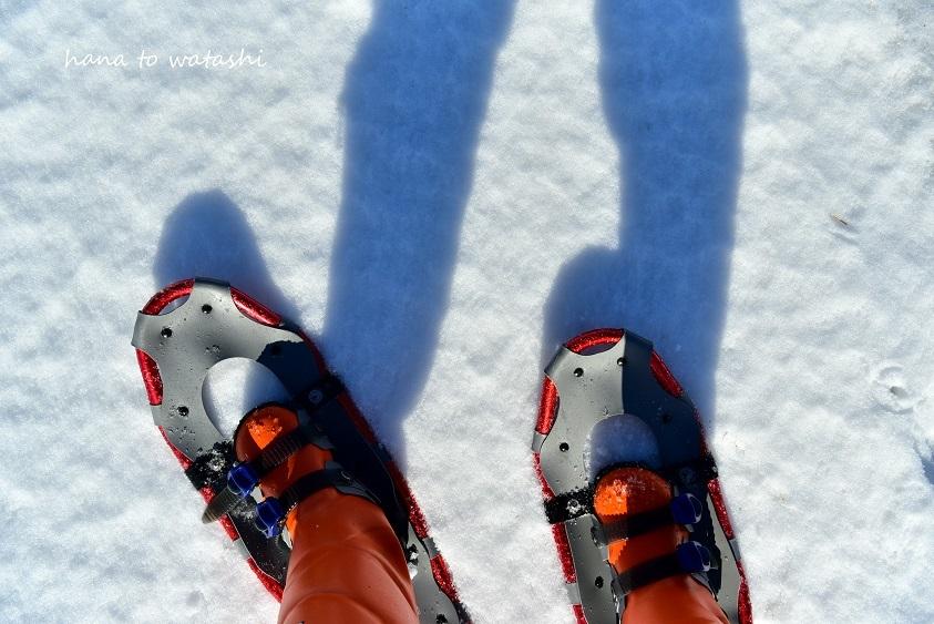 スノーシューでちょっと歩いてみた_e0120026_16594943.jpg